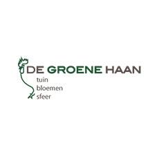 Groene Haan