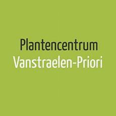 Vanstraelen-Priori