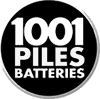 1001PILES